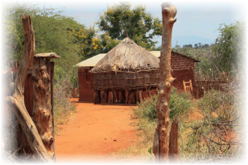 Kenyan Homes